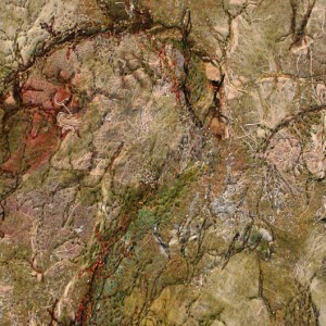 Spuren II | format 32 x 42 cm